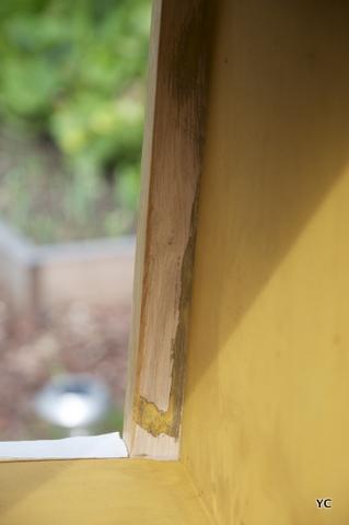 peinture ocre bois tanins